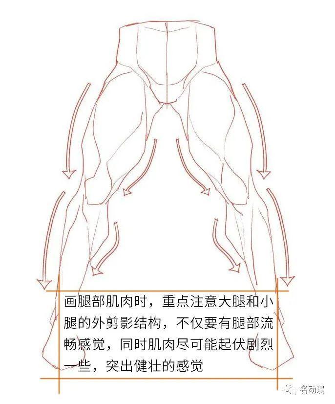 肌肉男裤子褶皱细节绘画处理方法