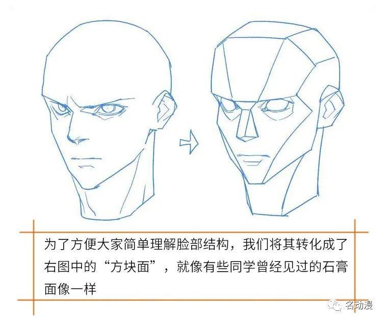 从脸部结构画法教你如何给脸部打光