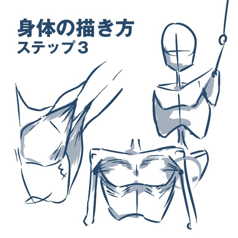 教你画肩膀处的肌肉结构